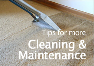 Tips for more Cleaning & Maintenance